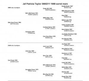 Jaf Patricia Taylor